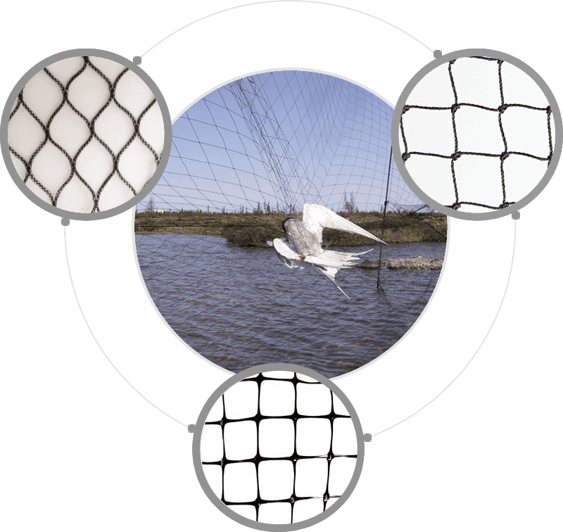 There is a large piece of bird netting over a lake for fishes protection, and we can offer various types for choice, such as knotted netting, knotless netting with square mesh or diamond mesh.